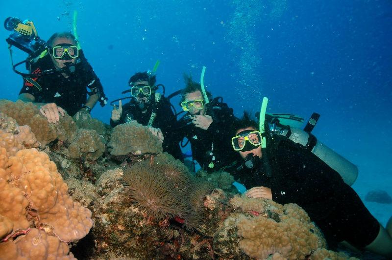 Tauchen am Great Barrier Reef, Cairns, Australien, Familienausflug, Wanderhunger, Tauchurlaub