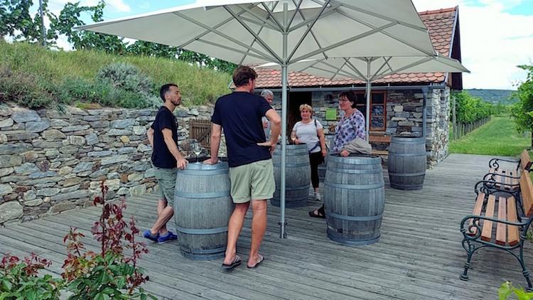 Auf der Terrasse vor dem Wächterhäuschen im Weingarten der Sandgrube 13. Verkostung von Grünem Veltliner. Wanderhunger