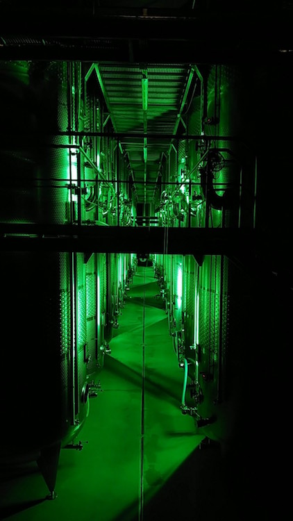 Blick in den grün beleuchteten Gär- und Reifekeller der Winzer Krems mit riesigen Stahltanks. Wanderhunger