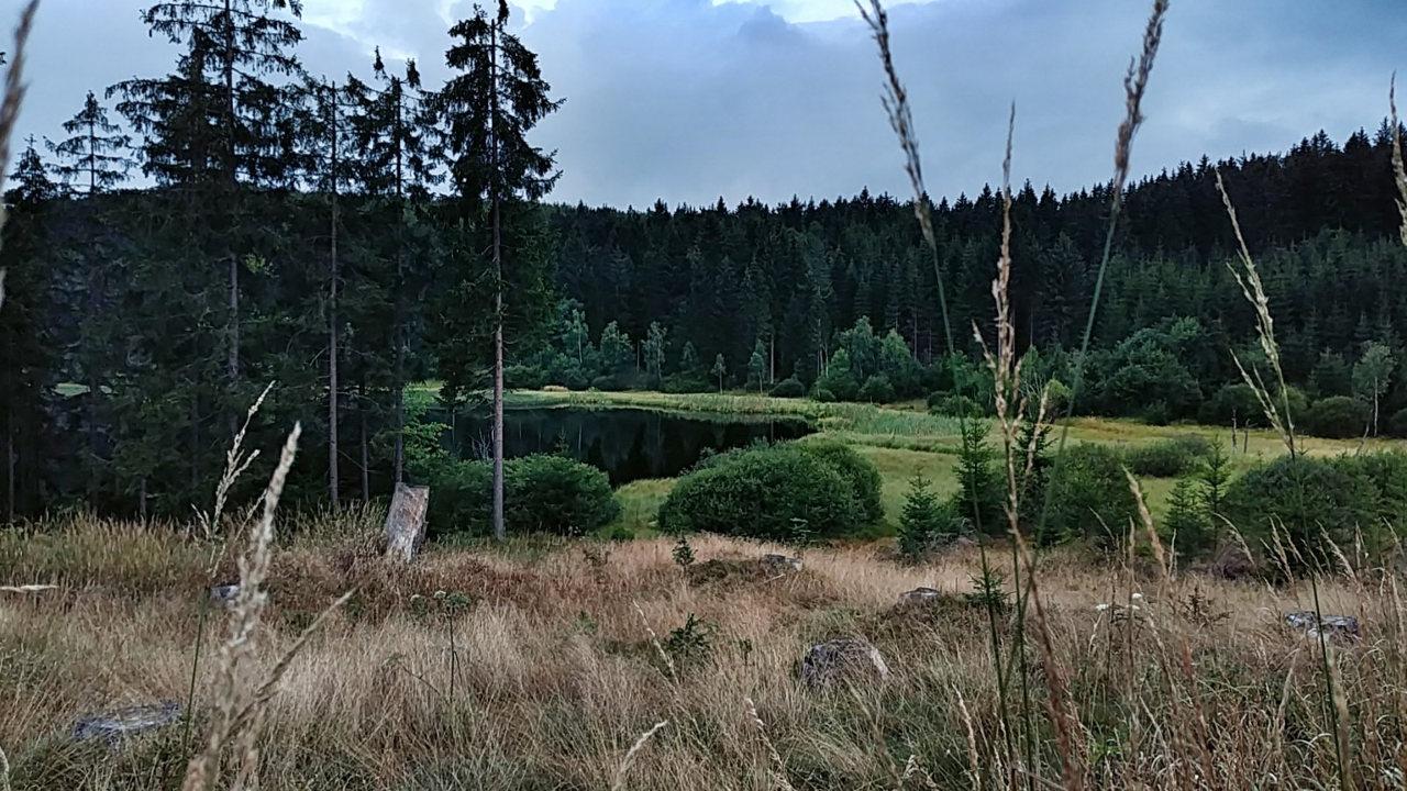 Blick auf den Spitz des Rubner Teichs im Tanner Moor bei Liebenau. Wanderhunger