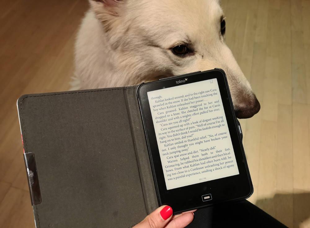 Tolino Shine e-Book Reader. Technik auf Reisen. Wanderhunger