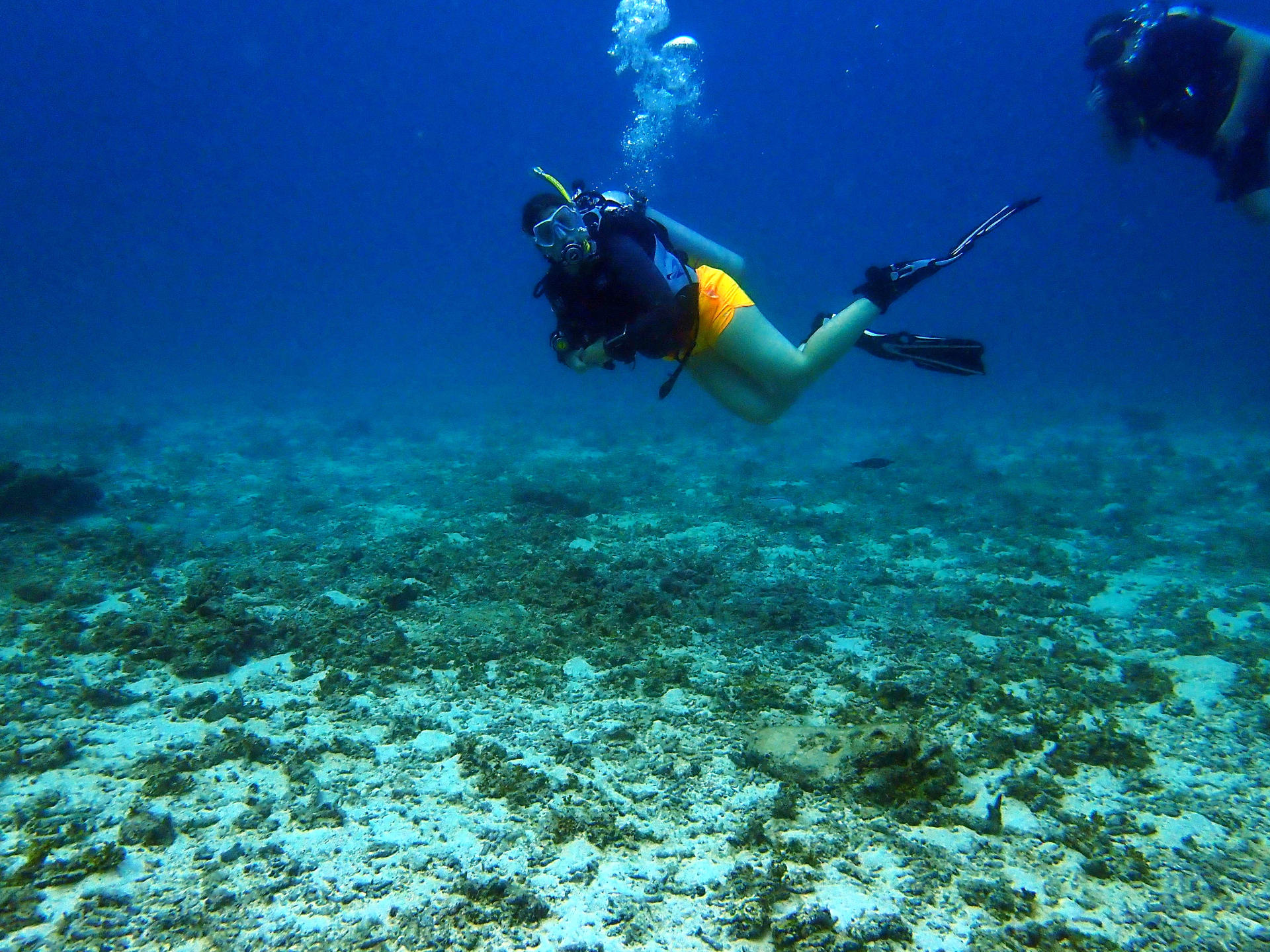 Martina Stasny - PADI Dive Instructor