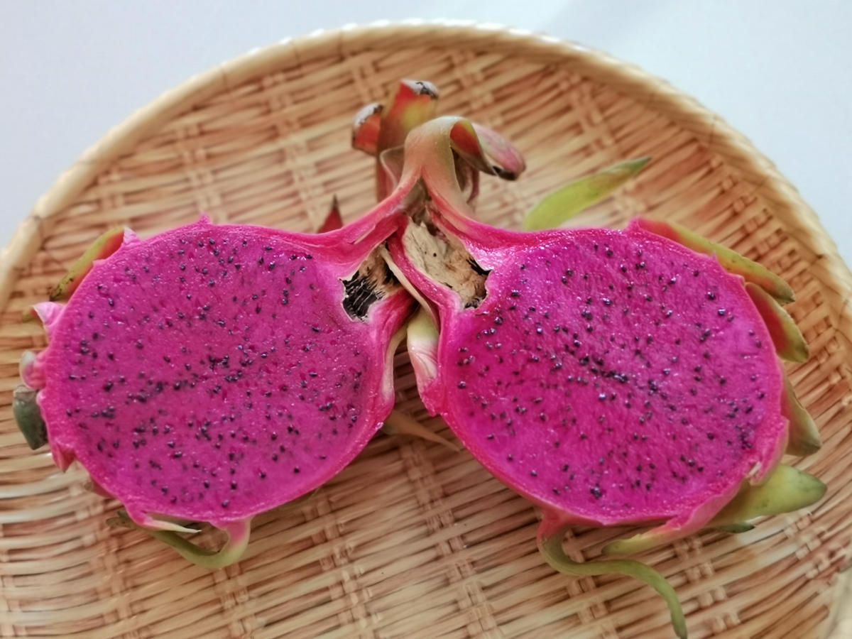 Die Drachenfrucht oder Pitahaya in Thailand kann entweder ein rosarotes oder weißes Fruchtfleisch haben. Wanderhunger