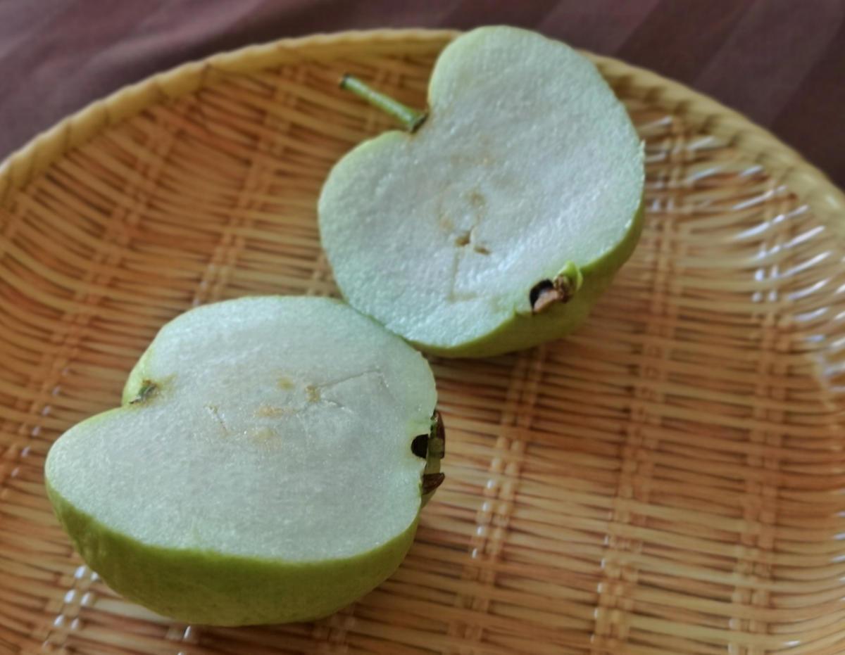 Die thailändische Guave wird gerne mit Chilidip oder Chilisalz gegessen. Sie schmeckt erfrischend und kräuterähnlich. Wanderhunger