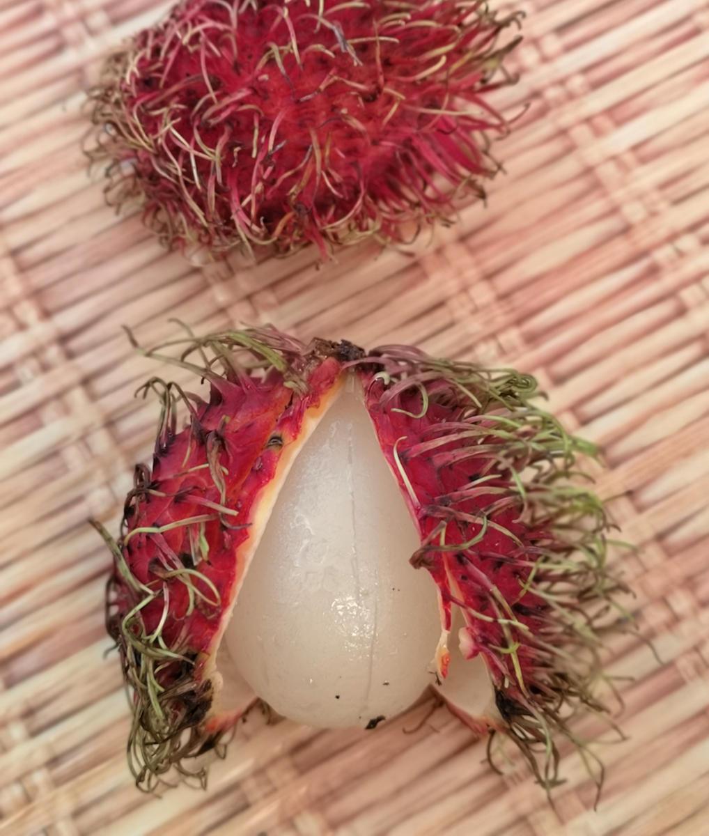Das Fruchtfleisch der Rambutan Frucht ähnelt optisch und geschmacklich der Litschi. Wanderhunger, Thailands Früchte