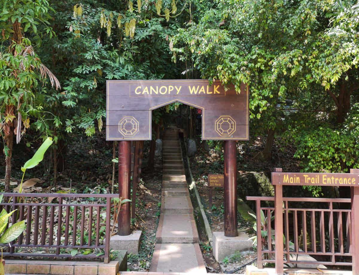 Der Eingang zum Canopy Walk im KL Forest Eco Park Kuala Lumpur, bei dem man auf Baumhöhe durch den URwald spaziert. Wanderhunger
