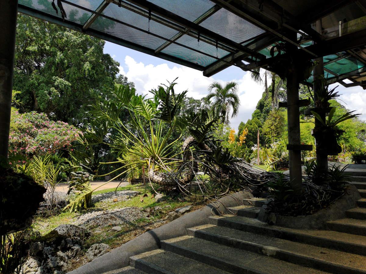 Die Perdana Lake Gartens oder der botanische Garten im Tun Abdul Razak Heritage Park in Kuala Lumpur bieten Ruhe und fantastische Flora abseits des Großstadtlärms. Sie sind besonders Gartenfreunden sehr zu empfehlen. Wanderhunger