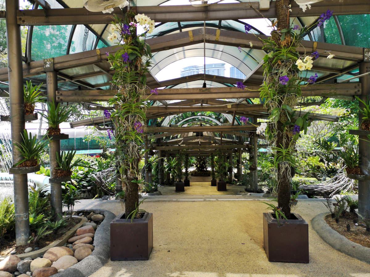Die Perdana Lake Gartens oder der botanische Garten im Tun Abdul Razak Heritage Park in Kuala Lumpur bieten Ruhe und fantastische Flora abseits des Großstadtlärms. Wanderhunger