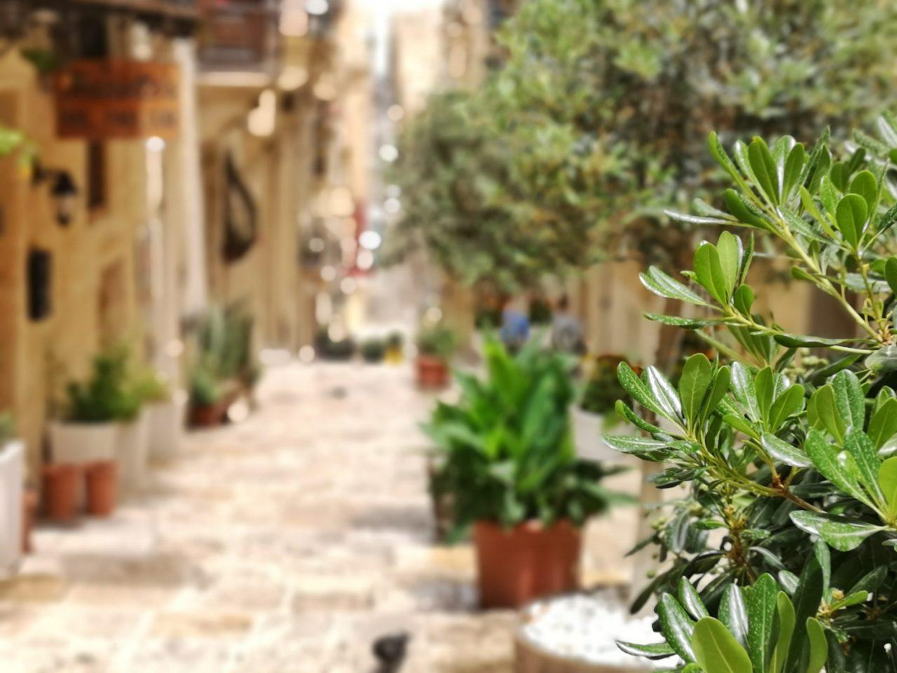 Valletta's steile Straßen und Gassen bilden den perfekten Fotohintergrund. Wanderhunger
