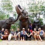 Elephant Retirement Park 9 Dee, Phuket, Gruppenbild zum abschluss des halbtägigen Ausflugs